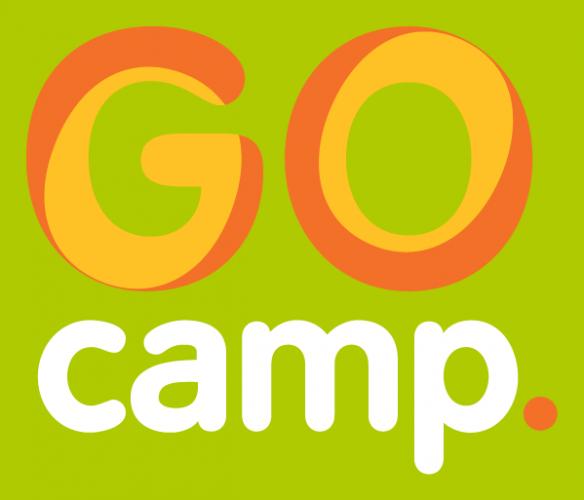 "Проект GoGlobal ""FCG_GoCamp"". Підсумки"