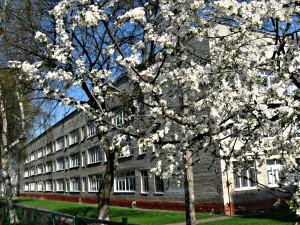 Наша прекрасна школа